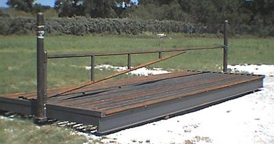 Alternate view of heavy duty cattle guard with endposts and swing gate