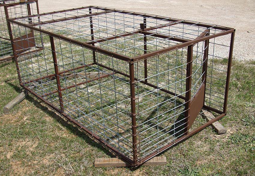 Wild Hog Trap with door shut